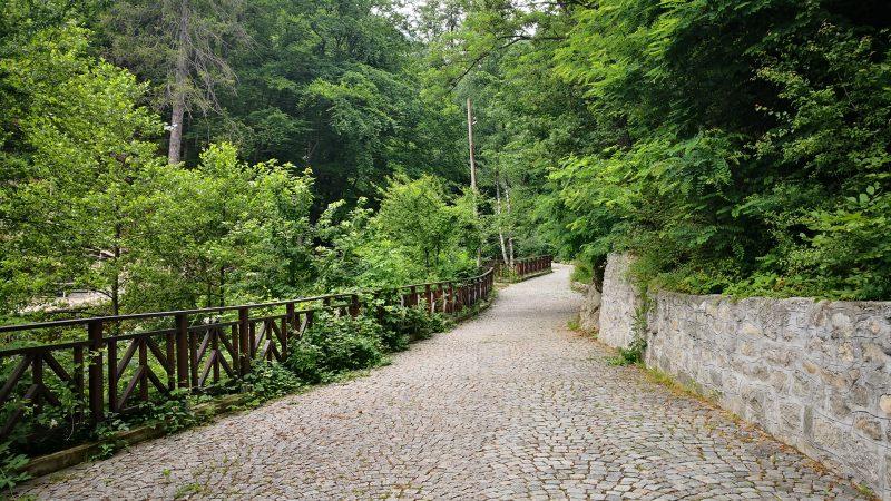 Пътеката водеща към Костенския водопад